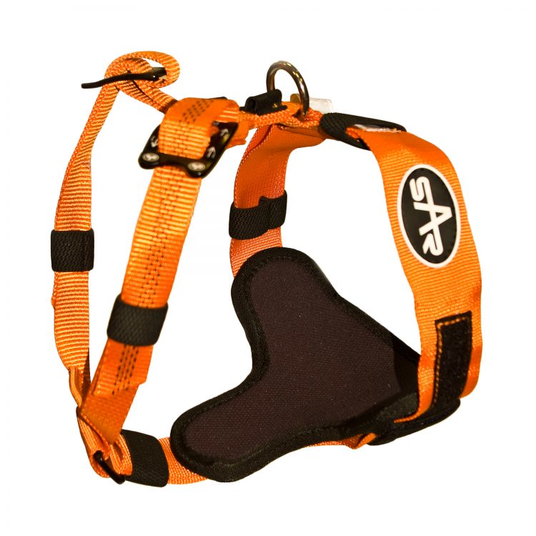 Search And Rescue Dog Training Equipment